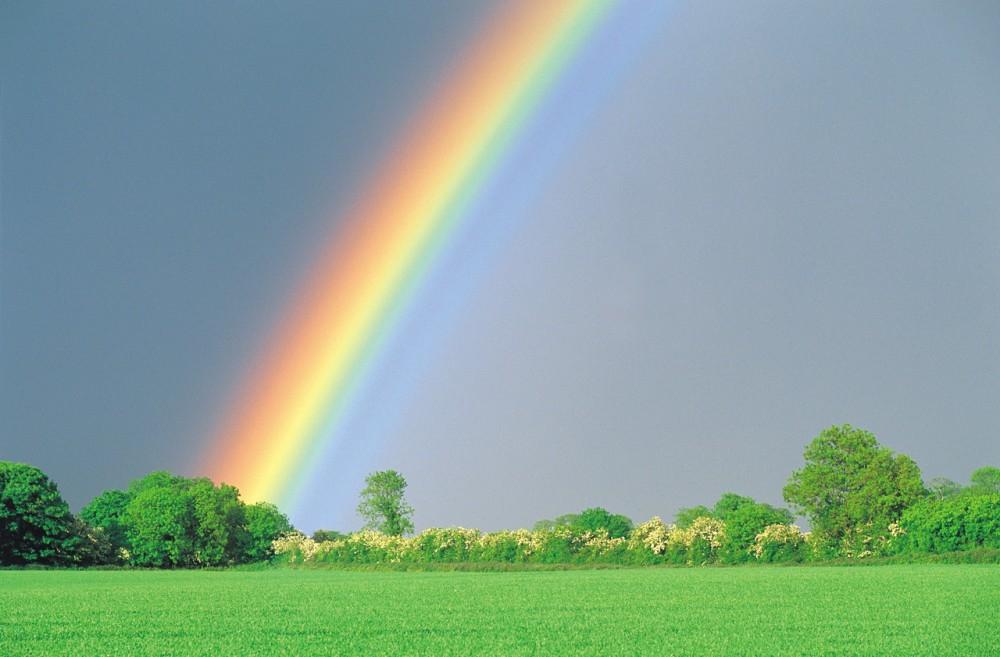 Driving Through a Rainbow (4/6)